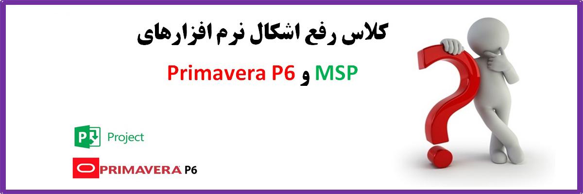 msp-primaverap6